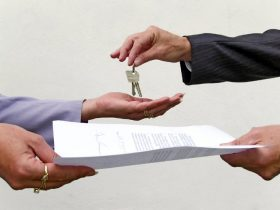 Business-plan real estate agency