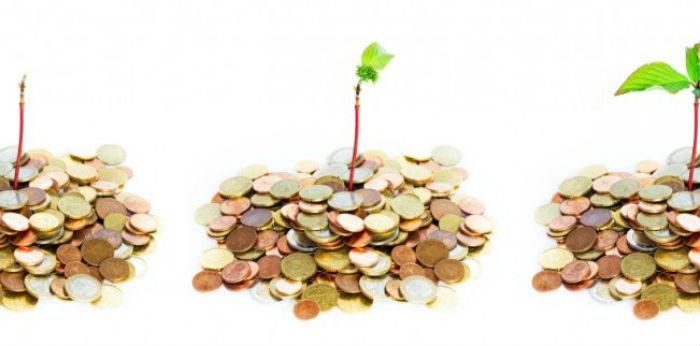 Особенности получения гранта на бизнес в сельской местности имеет свои нюансы.
