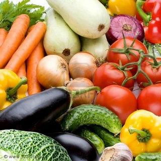 Бизнес-план выращивание овощей