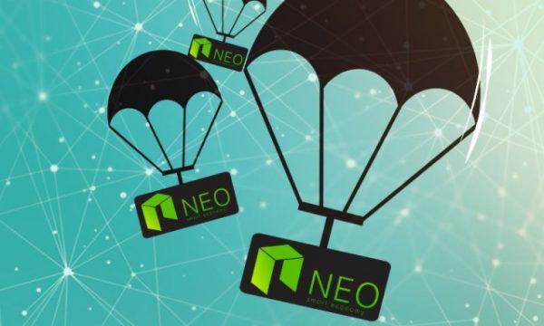 neo и ontology