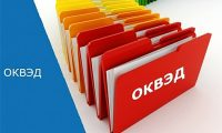 OKVED 2 codes 2019 a complete list of the General Classification of Economic Activities