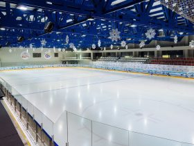 Business plan for an ice rink