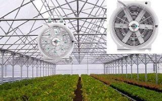 Бізнес план тепличного господарства
